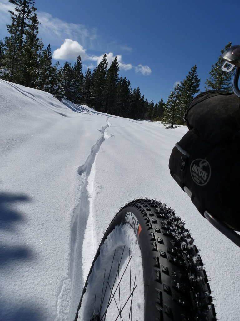 Any fatbikers in No Cal....-feb8_4in_fresh_reartire.jpg