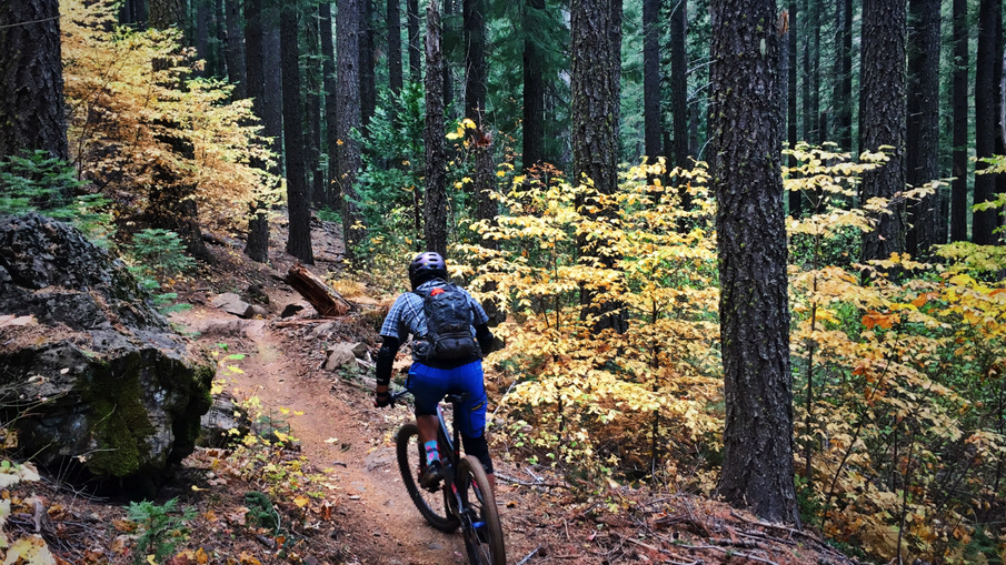 October 26-28, 2018 Weekend Ride and Trail Conditions Reports-fee7f50b-a462-40fe-86c8-88298108cfe8.jpg