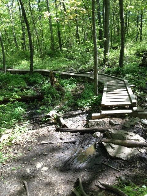 MA Trails Picture Thread-fells-pic-2.jpg