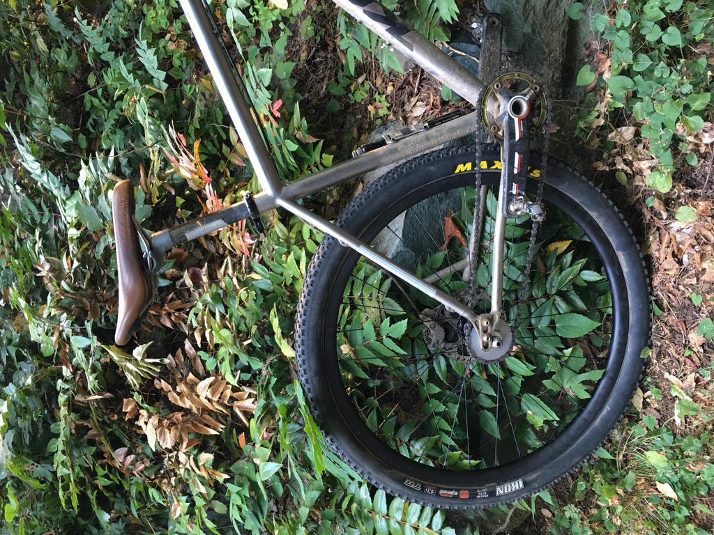Need new rear wheel Advice for my Raijin-file-2.jpg
