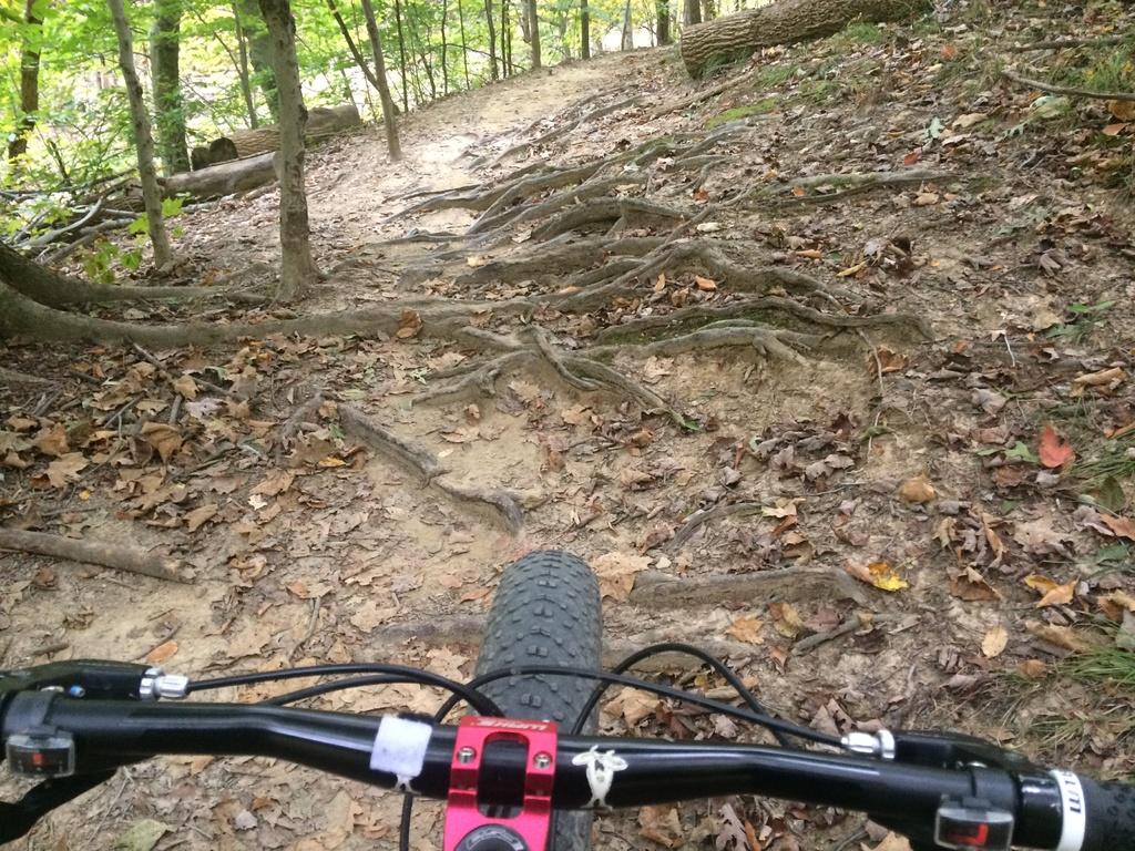 Fat Biking and health-file1-3-.jpg