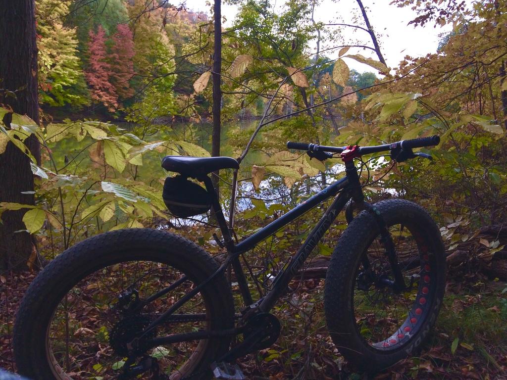 Fat Biking and health-file2-3-.jpg