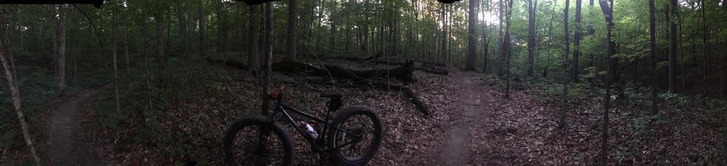 Fat Biking and health-file3.jpg