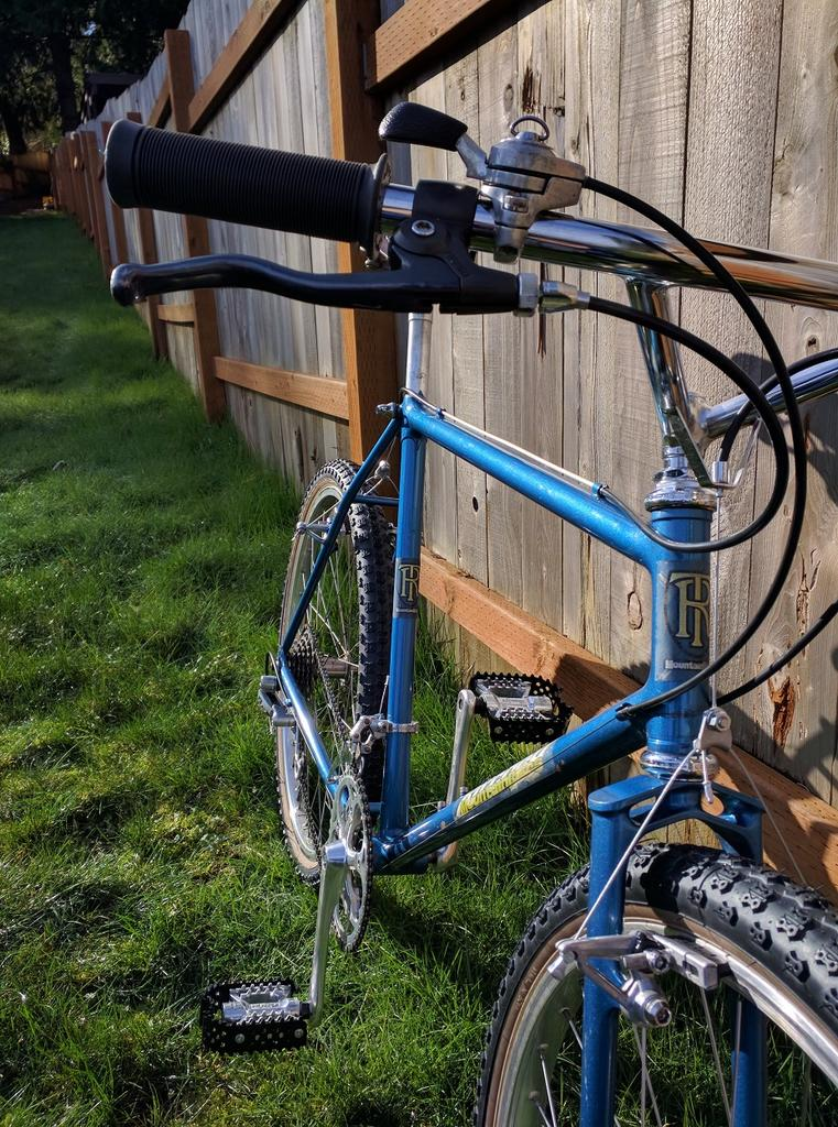 What Model early 80's Ritchey is this?-find1.jpg