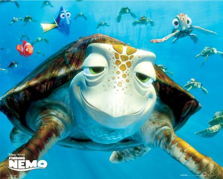 Name:  finding-nemo-turtles-4900799.jpg Views: 39338 Size:  29.1 KB