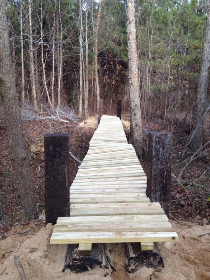 Building a pole bridge-finished2.jpg