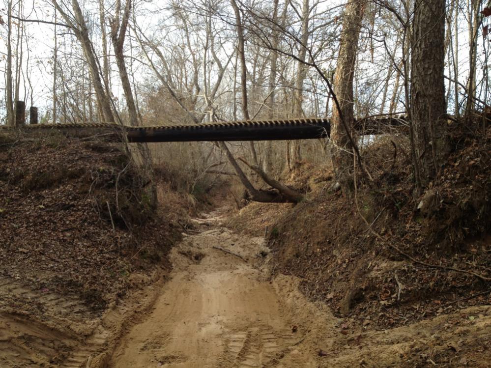 Building a pole bridge-finished4.jpg