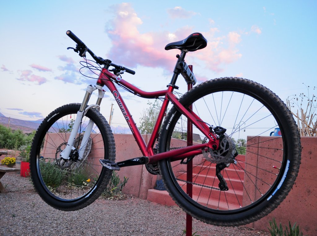 Long, Slow Build-finishedbike3.jpg