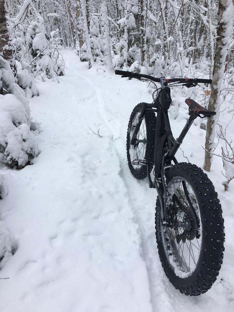 Daily fatbike pic thread-first-snowfall-2017.jpg