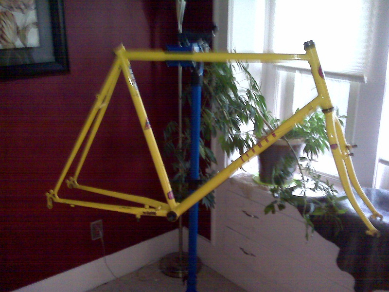 1989 Gary Fisher Montare Restoration (pics coming)-fisher-frame-03.jpg