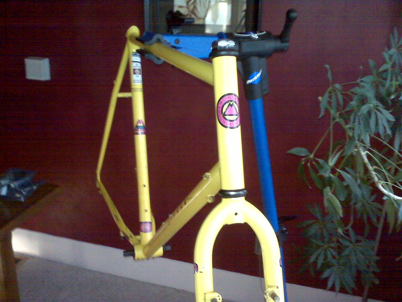 1989 Gary Fisher Montare Restoration (pics coming)-fisher-frame-04.jpg