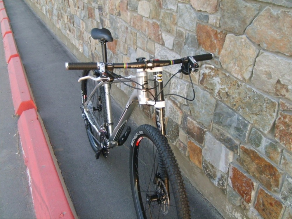 Anyone been out on a Alloy Flash 29er?-flash-29er-1.jpg