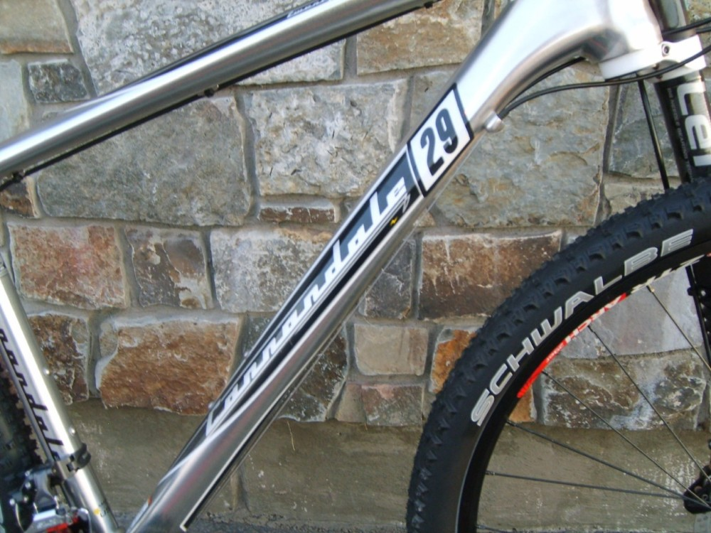 Anyone been out on a Alloy Flash 29er?-flash-29er-3.jpg
