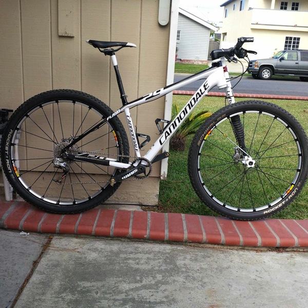 Flash 29er carbon 1x10 set up - any advice on MRP chain guide?-flashc2.jpg