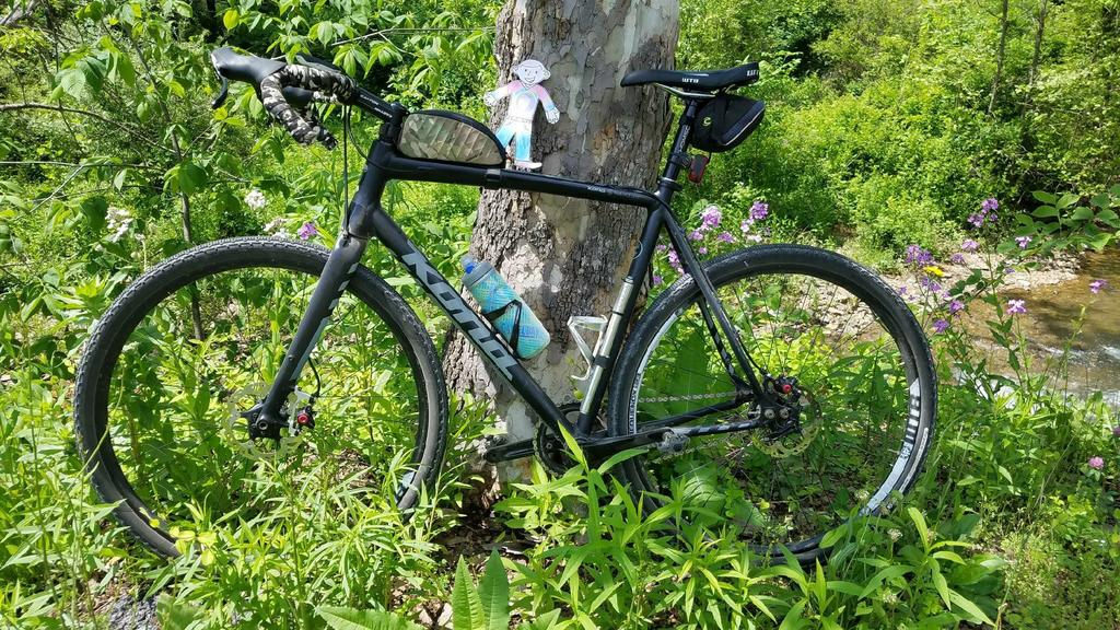 Post Your Gravel Bike Pictures-flat-stanley.jpg