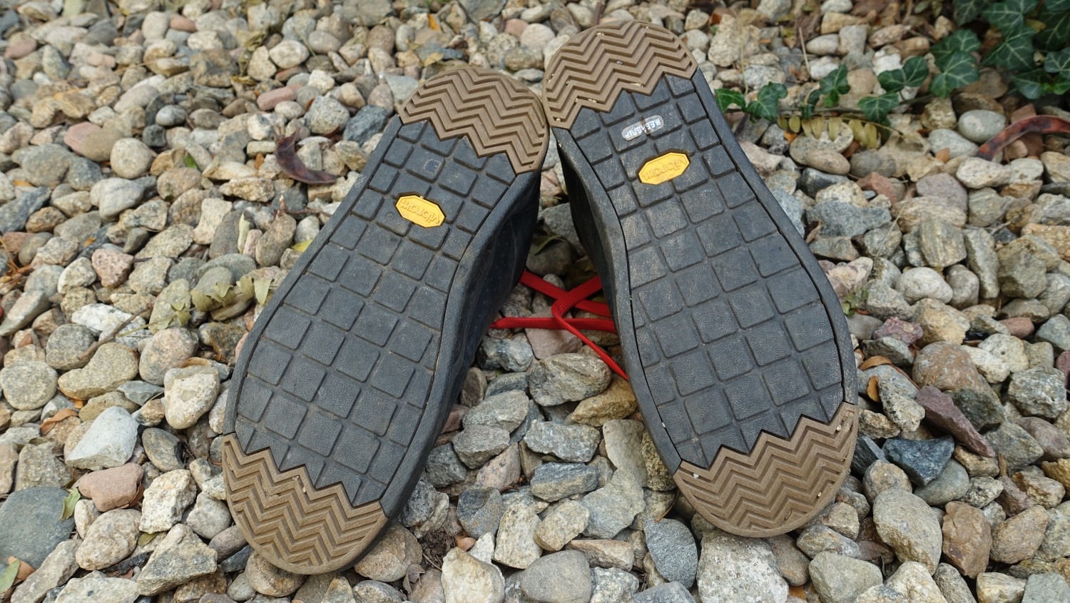 Bontrager Flatline Shoe Review