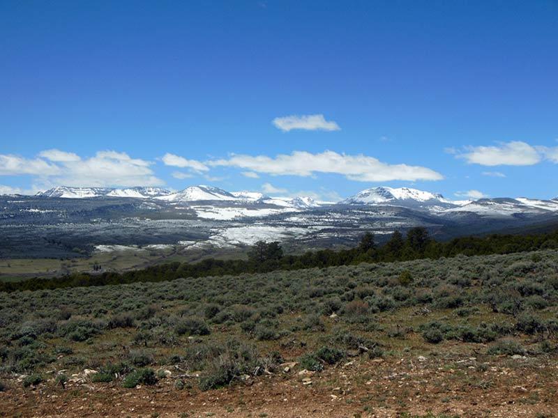 Trail Pics-flattops.jpg