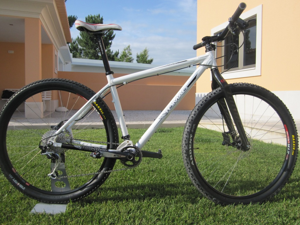 Niner Carbon forks on non-Niner frames - pics please-flint2.jpg