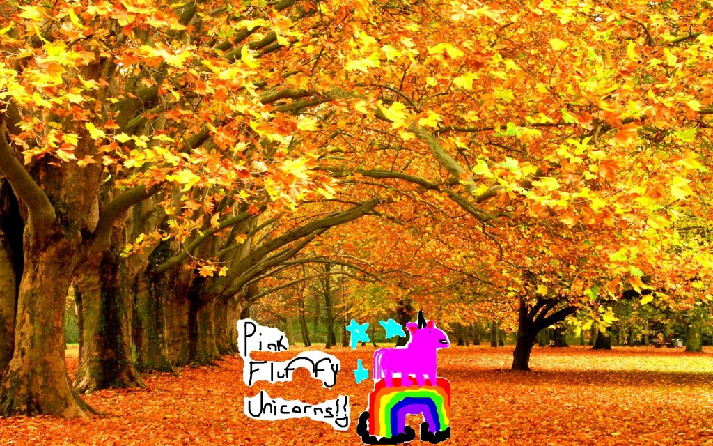 ATTENTION...please..no more 'pictures of the fall'  its getting nauseating...-fluffy-unicorns.jpg