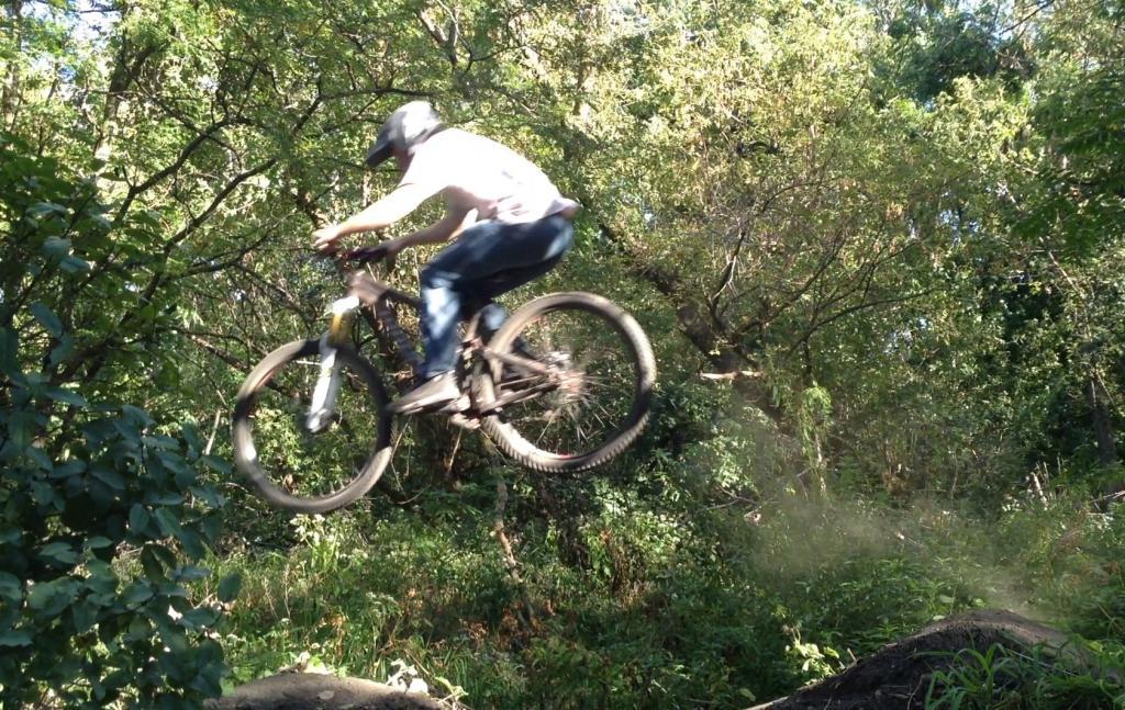 "29"" action shots.-flying-pig-bike.jpg"
