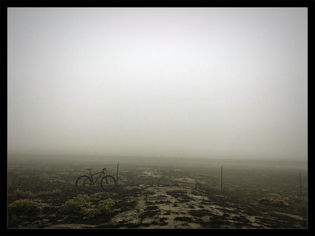Your Best MTB Pics with the iPhone-foggy-morning-lean.jpg