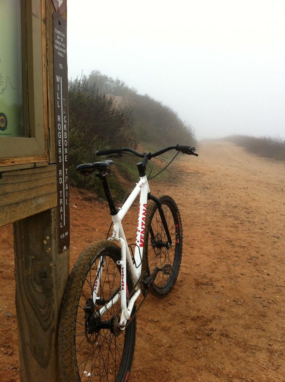 There is not enough pictures here, so......-foggy-ride2.jpg