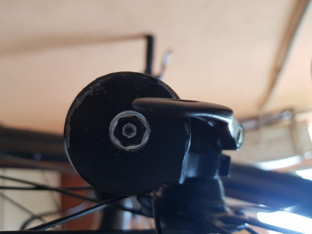 Help/ advice needed for my new bike-fork_bottom.jpg