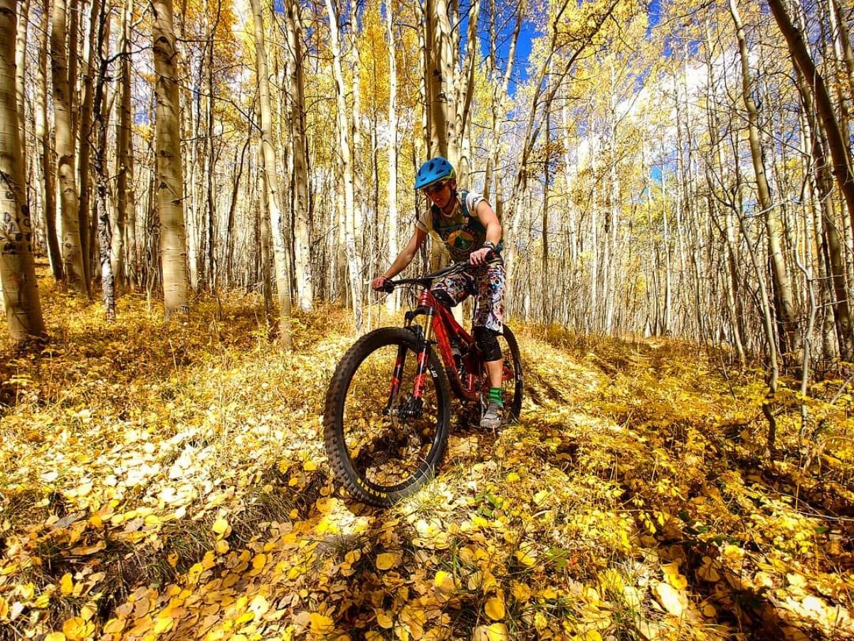 Fall colors on Fossil Ridge.