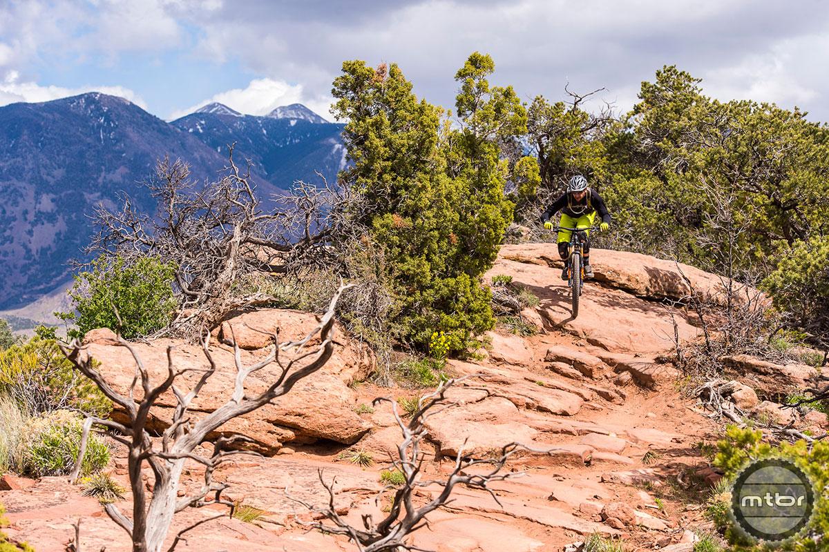 Fox 36 LPS Landscape