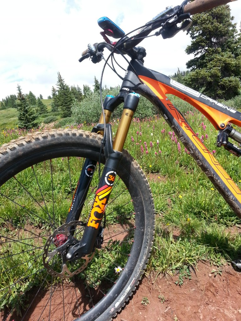 Any One Get Their Carbine 29er Yet?-foxy-carbine1.jpg
