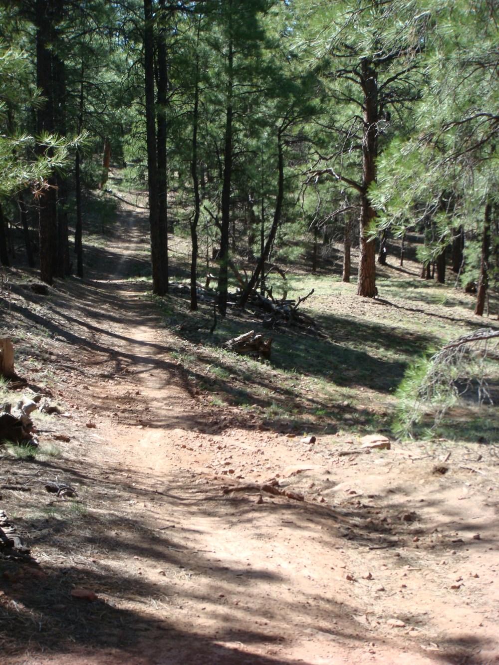 Flag Trail Updates-fp2.jpg