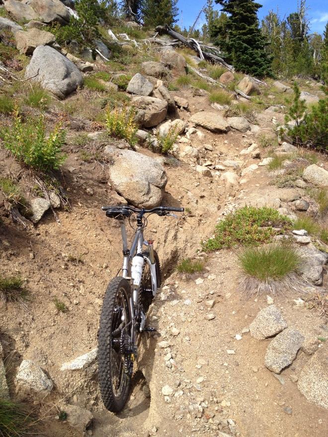 Icicle Ridge-fr_449_size880.jpg