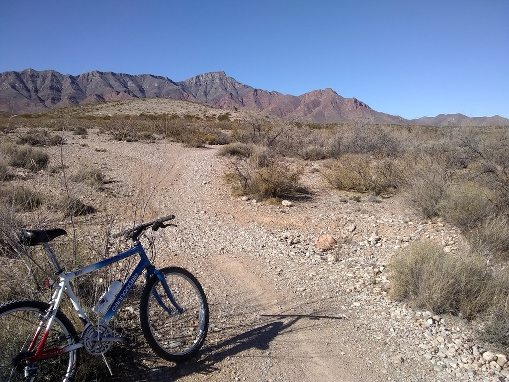 What can you do with a fully rigid 29er XC bike?-franklin-mts_xmas.jpg