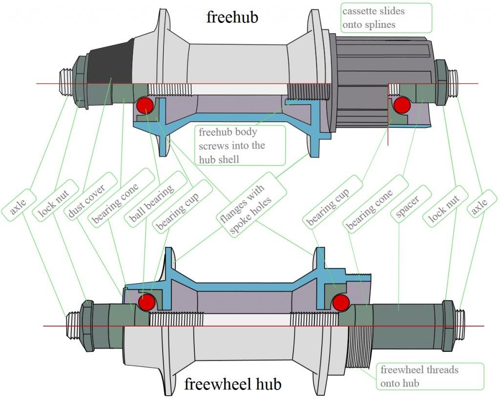 Newbie looking for input/opinions!-freehub-vs.-freewheel-red-bearing.jpg