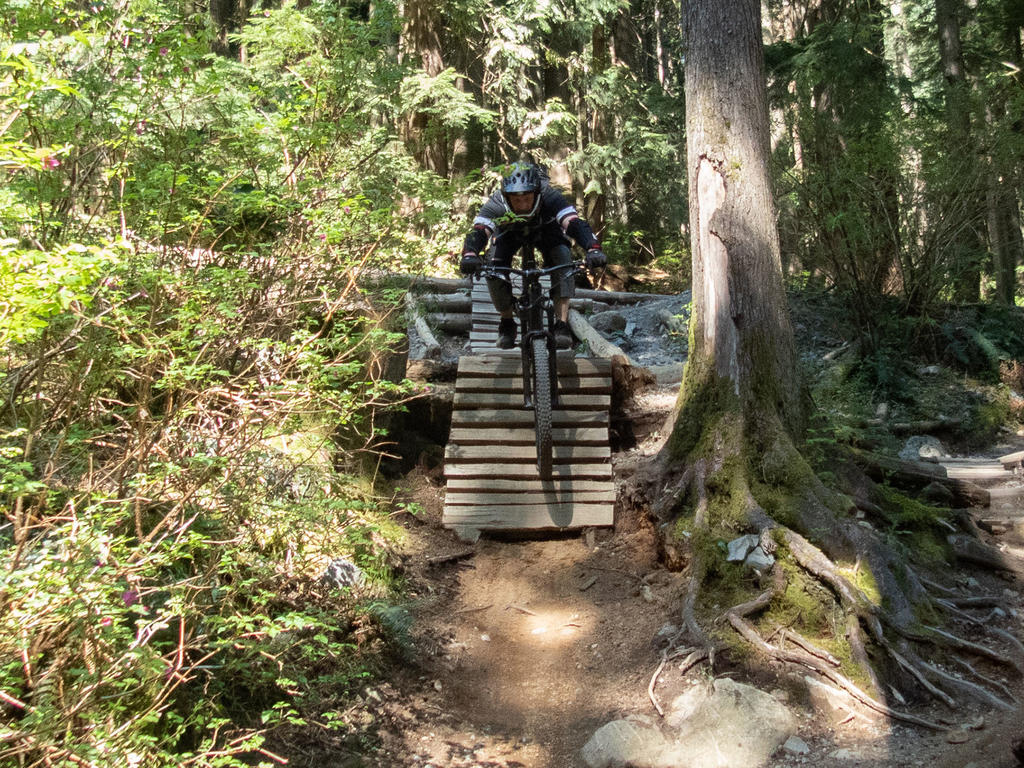 did you ride today?-fromme-april-27-2018-2.jpg