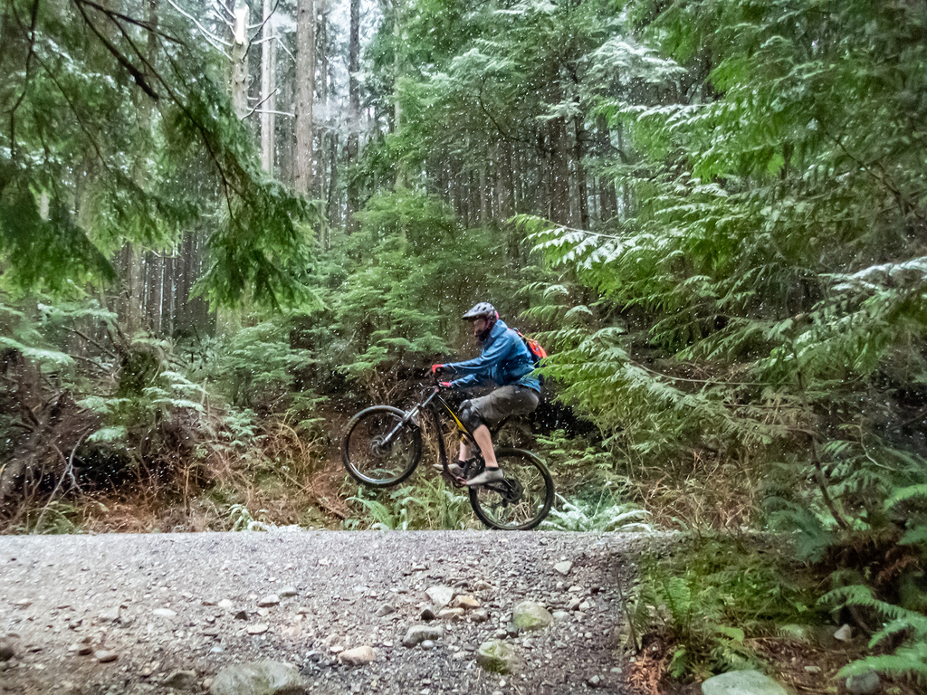 did you ride today?-fromme-jan-2-2019-17.jpg