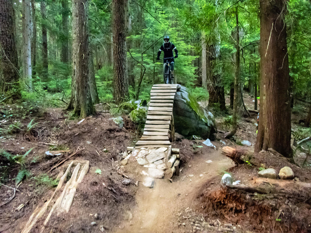 did you ride today?-fromme-july-17-2018-3.jpg