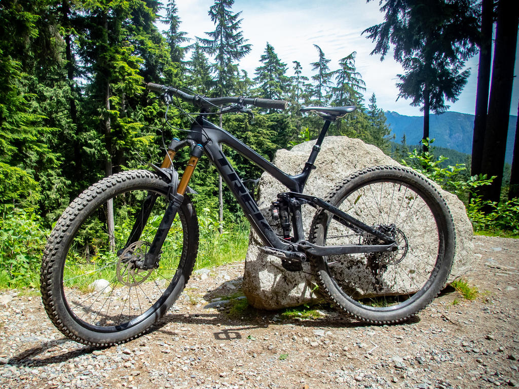 did you ride today?-fromme-july-8-2018-2.jpg