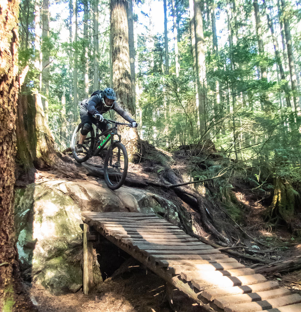 did you ride today?-fromme-oct-10-2018-7.jpg
