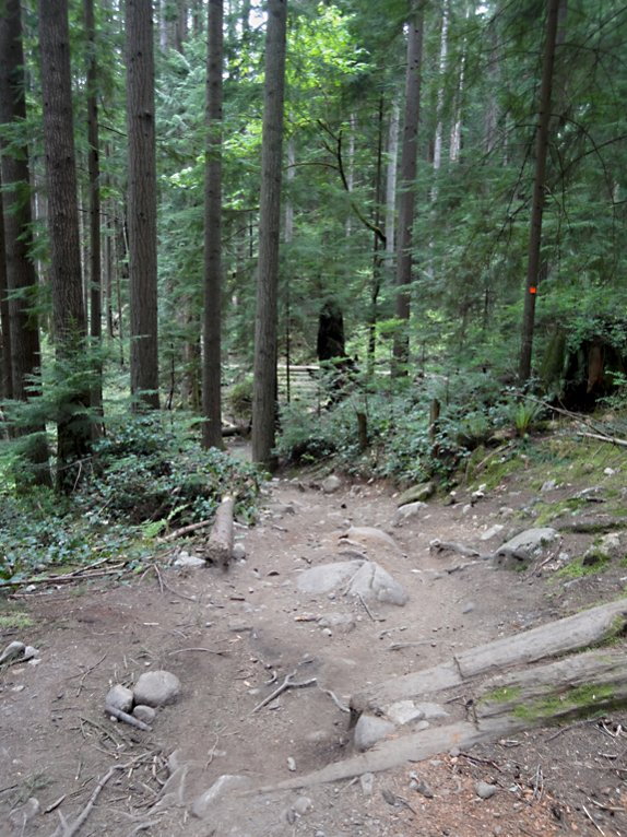 Mt Fromme pioneer-fromme1.jpg