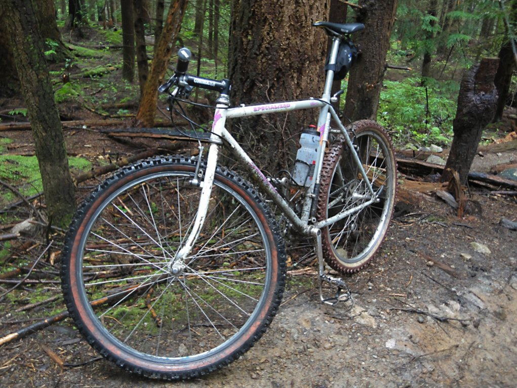Mt Fromme pioneer-fromme2.jpg