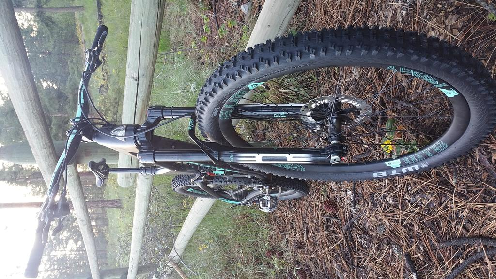 My (2016) Marin Attack Trail (Pro) Review-front.jpg
