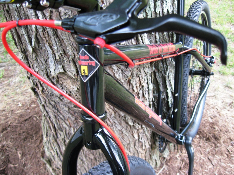 Post pics of your FULLY RIGID SS 29er-front-oblique-tight.jpg