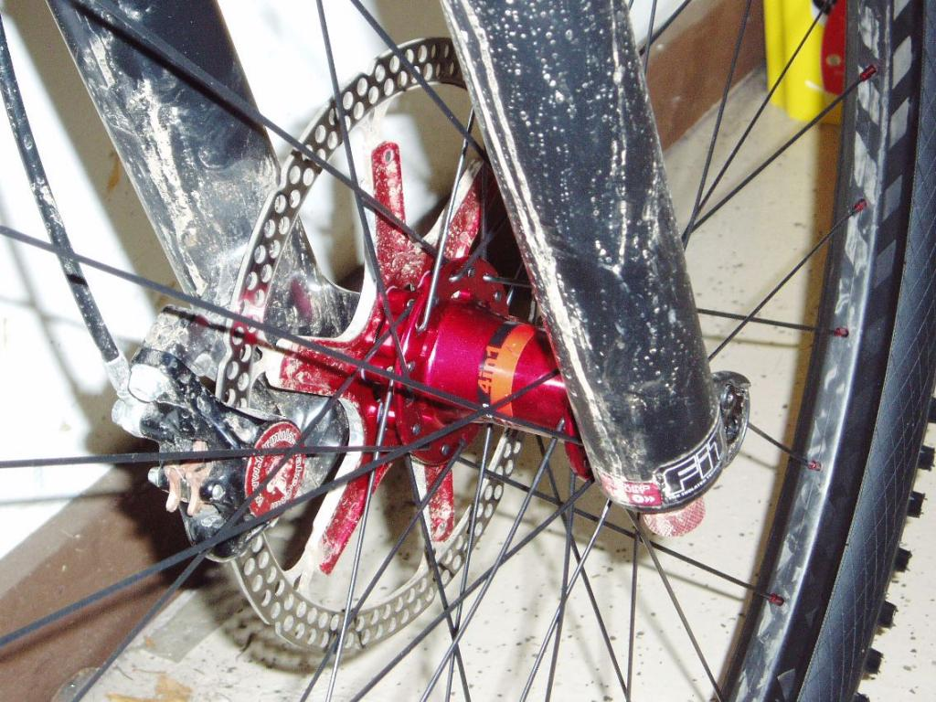 (Cheap) Chinese Carbon Rims?-frontwheel1.jpg