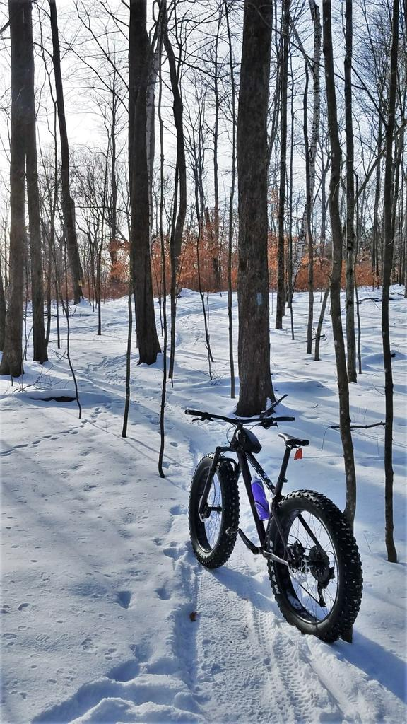 Did you ride in Massachusetts today?-frosty-violet.jpg
