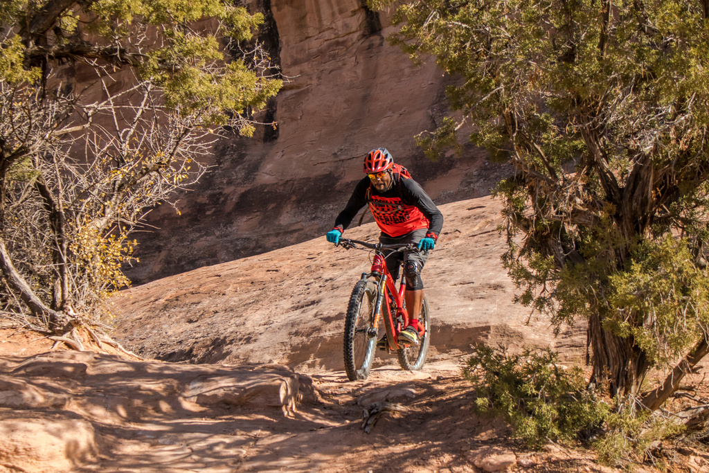 Honest question: Why have I never seen a black person on a MTB?-fruitafall.jpg