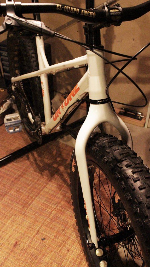 on one fatty carbon fork-fullfront.jpg