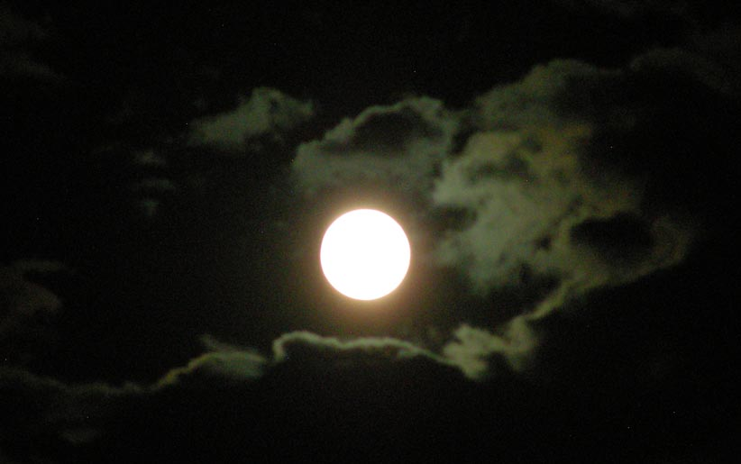 Let's see your Super Moon pics!-fullmoon.jpg