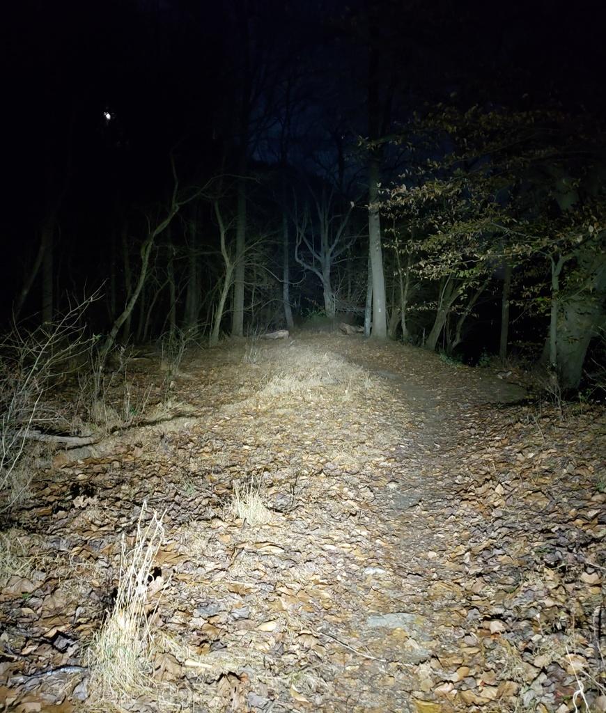 Just Received;  Fireflies E01 ( 10 / 2019 )-fullmoonfever2.jpg