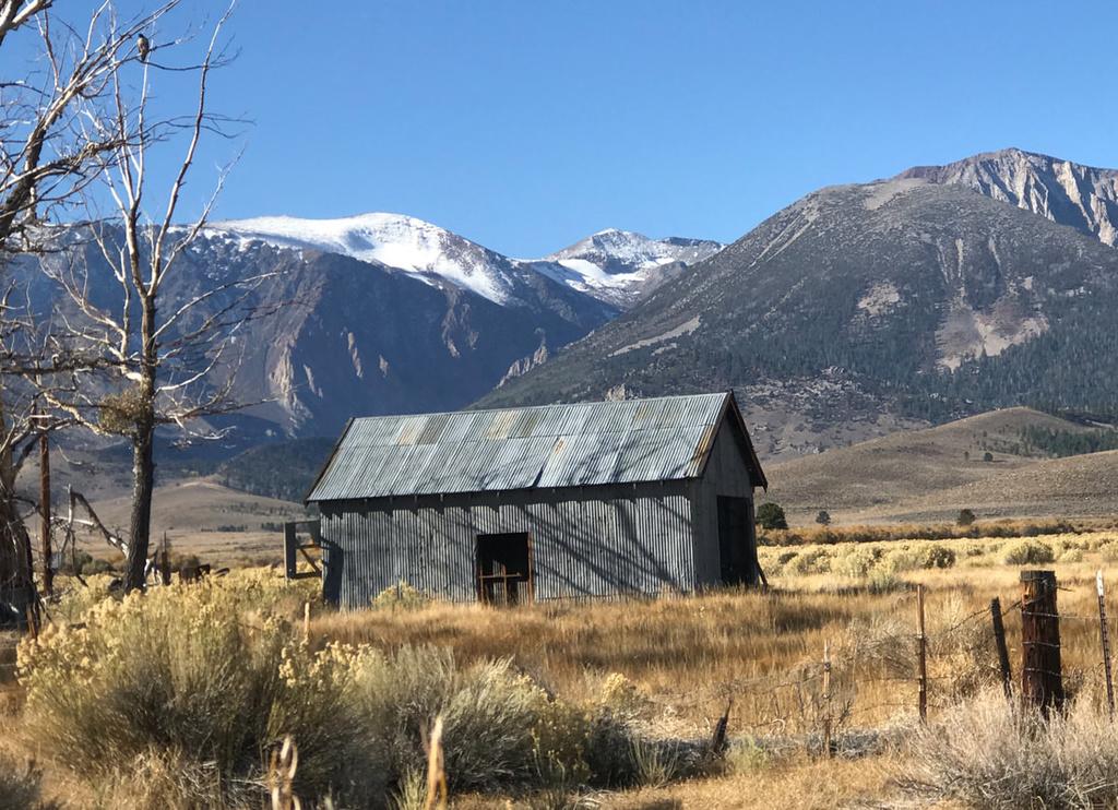 Tahoe to Mammoth Trail - looking for singletrack-fullsizeoutput-9f14_orig.jpg